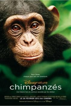Chimpanzés (2012)