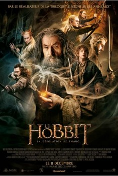 Le Hobbit : la Désolation de Smaug (2013)