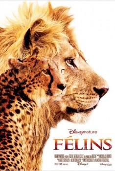 Félins (2011)