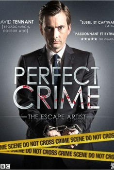 Perfect Crime (Séries TV)