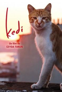 Kedi - Des chats et des hommes (2016)