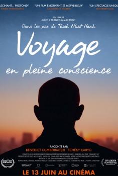 Voyage en pleine conscience (2018)