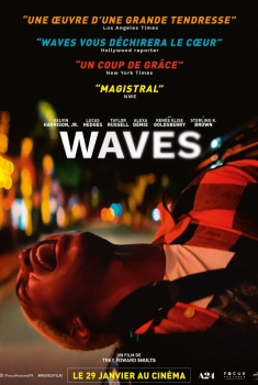 Waves (2020)