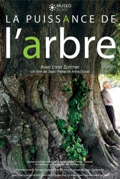 La Puissance de l'arbre avec Ernst Zürcher (2021)