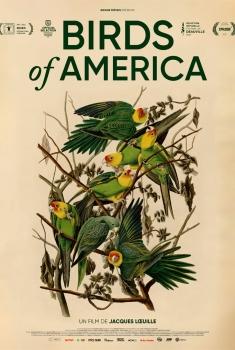 Birds of America  (2022)
